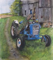 The Peacock and the Tractor